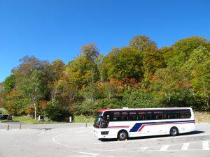 天気も良く紅葉も色濃くなってきました。